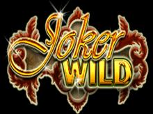Дикий Джокер от Netent – играть онлайн бесплатно